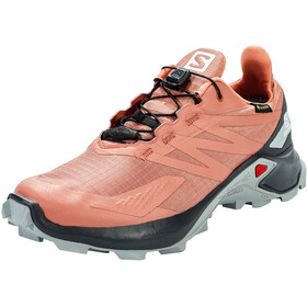 Salomon Supercross Blast GTX Sko Damer, grå/pink